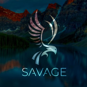 SAVAGE Media Group - Videographer / Video Services in Chicago, Illinois