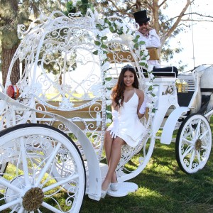 Savannah Rose Carriages - Horse Drawn Carriage / Princess Party in Rancho Cucamonga, California
