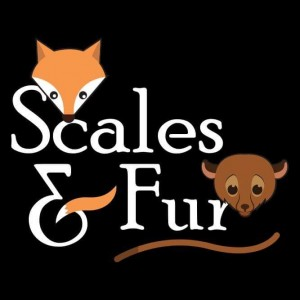 Scales and Fur - Petting Zoo in Boca Raton, Florida