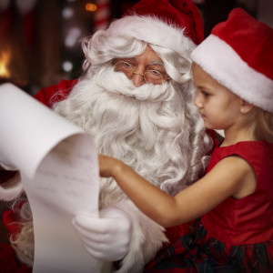 Scheme A Dream - Event Planner / Santa Claus in Winnipeg, Manitoba