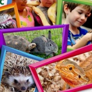 Schoolhouse Reptiles - Petting Zoo in Lafayette, Louisiana