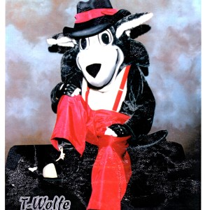 Wolfe Entertainment - Costumed Character in Morganton, North Carolina