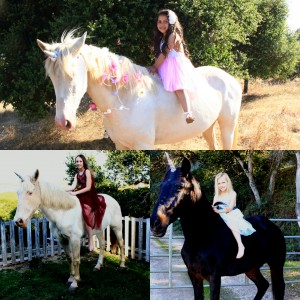 Seahorse Pony Party and Face Painting - Pony Party in Prunedale, California