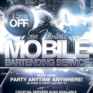 Sean Martini's Bartending Service - Bartender / Waitstaff in Merrillville, Indiana