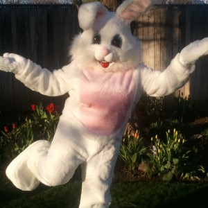 Seattle's Easter Bunny - Easter Bunny / Balloon Twister in Seattle, Washington