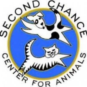 Second Chance Center for Animals - Event Planner / Animal Entertainment in Flagstaff, Arizona