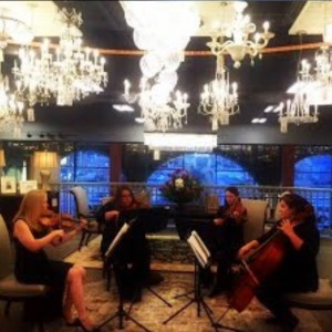 Serenade St. Louis - String Quartet / Wedding Entertainment in St Louis, Missouri
