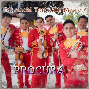 Mariachi Toros de Mexico de Roberto Cortes - Mariachi Band / Spanish Entertainment in Bakersfield, California