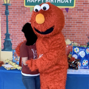 Sesame Street Elmo - Cartoon Characters in Danville, Illinois
