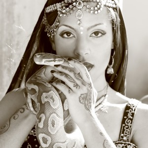 Sevdha Belly Dance and Bollywood - Bollywood Dancer / Storyteller in Los Angeles, California