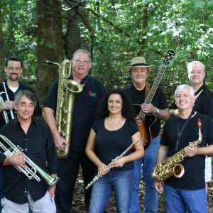 Shady Lady and the Boyz - Party Band / Big Band in Johns Creek, Georgia