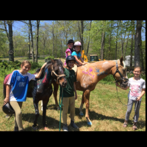 Sheffield Way Farm LLC - Pony Party in Exeter, Rhode Island