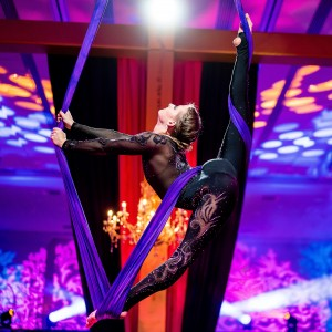 Shellyflex Entertainment - Acrobat in Rockville, Maryland