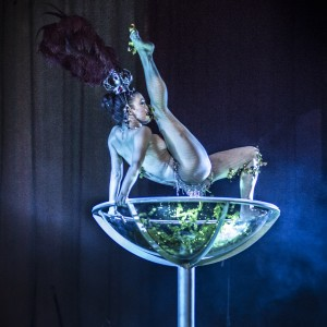 SHIEN Artists - Variety Entertainer / Contortionist in New York City, New York