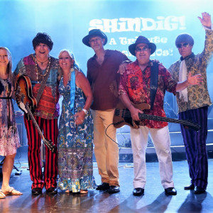 SHiNDiG! - 1960s Era Entertainment / Tribute Band in Hinsdale, Illinois