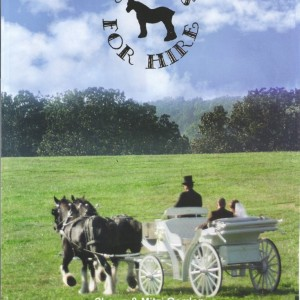 Shires for Hire Carriage Service - Horse Drawn Carriage / Wedding Services in Springfield, Missouri