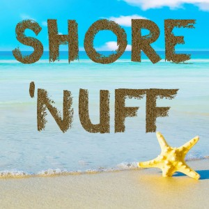 Shore 'Nuff - Cover Band in Toms River, New Jersey
