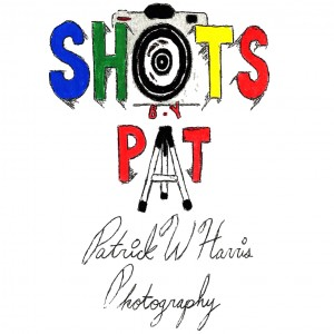 Shotsbypat - Photographer / Portrait Photographer in Brooklyn, New York