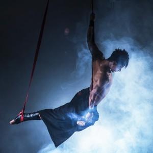 Sifu-dancer, martial artist, aerialist - Aerialist in Las Vegas, Nevada