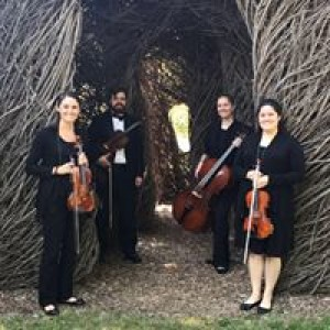 Silver Strings Quartet - String Quartet / Wedding Musicians in South Bend, Indiana