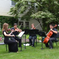 Simply Strings - String Quartet in Grand Rapids, Michigan