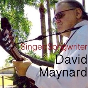 Singer / musician - Singing Guitarist in Glendale, Arizona
