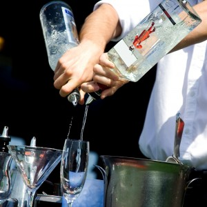 Sky Bartending Services - Bartender in San Jose, California