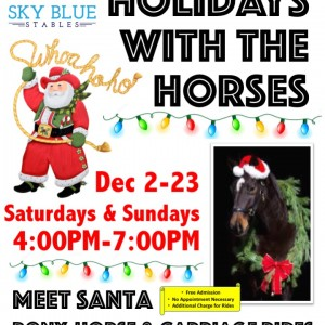 Sky Blue Stables-Pony/Horse Parties