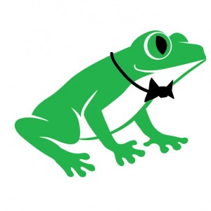 Smiling Toad Productions - Videographer / Wedding Videographer in Oak Park, Illinois