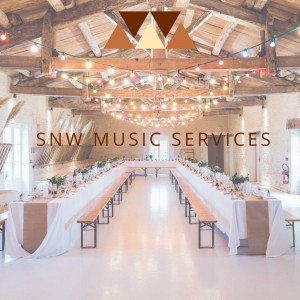 SNW Music Services - Singing Pianist in McCalla, Alabama