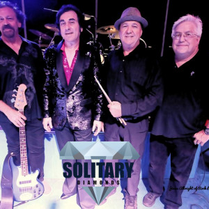 Solitary Diamonds - Tribute Band in San Diego, California