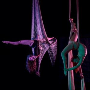 Anna Thomas-Henry Aerialist in Net and Fabric - Aerialist in New York City, New York