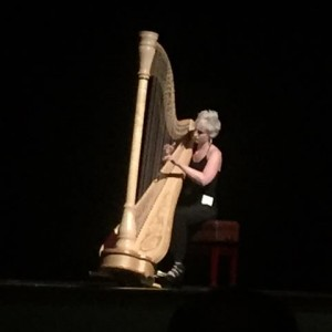 Solo Harpist - Harpist in Boston, Massachusetts