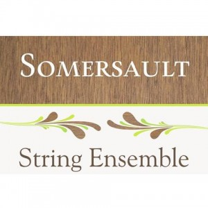 Somersault String Ensemble - String Quartet / Wedding Entertainment in Chattanooga, Tennessee
