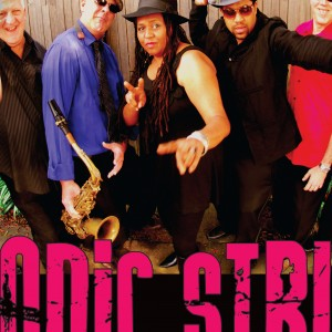 Sonic Strut - Soul Band in Sebastopol, California