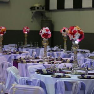 """Sophisticated Events Decorator"" - Party Decor in Boston, Massachusetts"