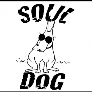 Soul Dog - Dance Band / Wedding Entertainment in Paducah, Kentucky