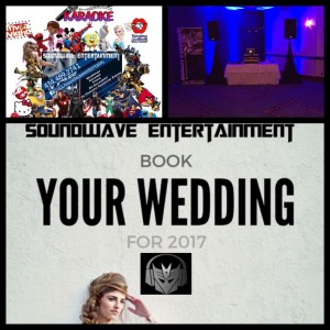 Soundwave Entertainment - Wedding DJ / Superhero Party in Danville, Virginia