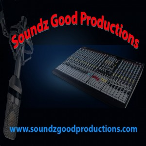 Soundz Good Productions - Mobile DJ / Outdoor Party Entertainment in Coal City, Illinois