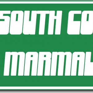 South County Marmalade - Rock Band / Blues Band in McKinney, Texas
