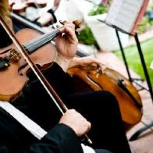 The Elegant Wedding Music - Violinist in New Orleans, Louisiana