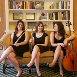 Special Event Music - Classical Ensemble / Harpist in Pittsburgh, Pennsylvania