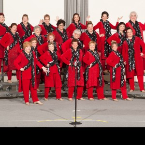 Spring Valley Chorus - A Cappella Group in Schaumburg, Illinois