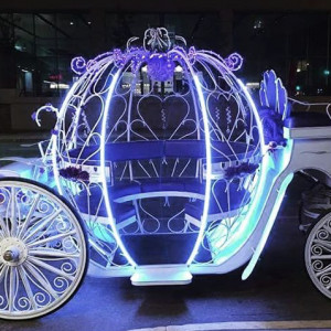 St. Louis Horse Drawn Carriage & Funeral - Horse Drawn Carriage in St Louis, Missouri