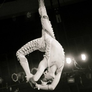 Starr Performances - Aerialist / Fire Performer in Gainesville, Florida