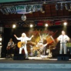 STAYIN' ALIVE - Tribute- The Bee Gees & Disco Show - Tribute Band / Disco Band in Tampa, Florida