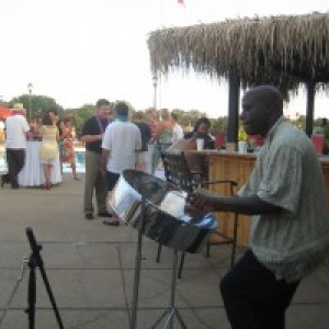 Steel Drum Flavor - Steel Drum Player / Calypso Band in St Louis, Missouri