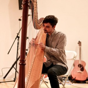 Stephan Haluska - Harp - Harpist / Rock Band in Cleveland, Ohio