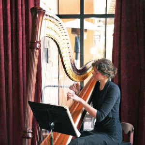 Stephanie Claussen, harpist - Harpist / Celtic Music in St Paul, Minnesota