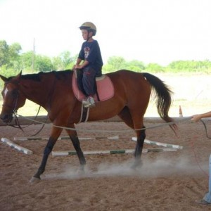 Sterling Hunter Jumpers Riding Stable